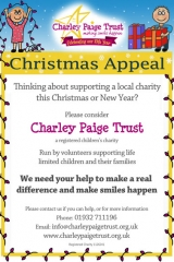 Christmas Appeal Poster by SprialNet Design