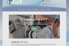 consultant-in-ent-website