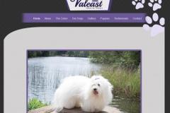 valest-website