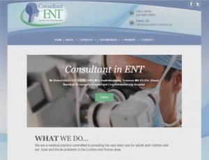 Consultant in ENT
